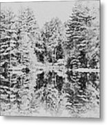 Winter Lake Metal Print