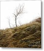 Winter Landscape Metal Print by Bernard Jaubert