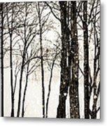 Winter Landscape On Snowy Day Metal Print