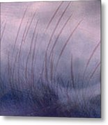 Winter Long Grass Metal Print