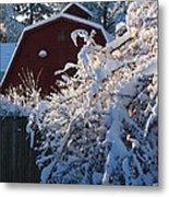 Winter Look Metal Print