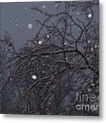 Winter Night Metal Print by Sacred  Muse