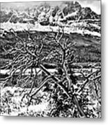 Winter On The Horizon Metal Print
