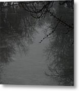 Winter Reflections Metal Print