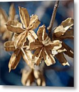 Winter Remainder Metal Print