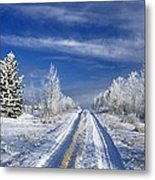 Winter Rural Road Metal Print