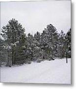 Winter Slope Metal Print