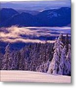 Winter Snow, Cascade Range, Oregon, Usa Metal Print