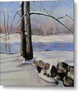 Winter Solace Metal Print by Cindy Plutnicki