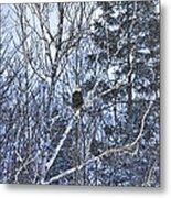 Winter Storm Alert Metal Print