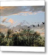 Winter Sunset  Silhouette Metal Print by Brian Wallace