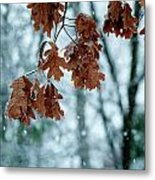 Winter Takes Hold Metal Print