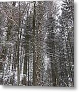 Winter Tress Metal Print