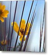 Winter Wildflowers Metal Print