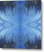 Winter Wings Metal Print