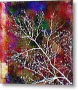 Winter Wishes Metal Print by Judi Bagwell