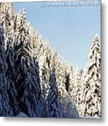 Winter Wonderland Austria Europe Metal Print by Sabine Jacobs