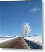 Winter Wonderland Series 5 Metal Print