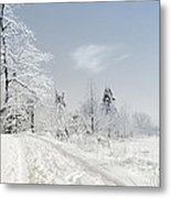 Winters Beauty Metal Print