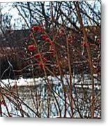 Winters Food Store Metal Print