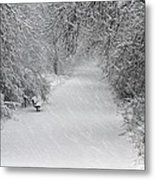 Winter's Trail Metal Print