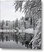 Wintery Reflections Metal Print