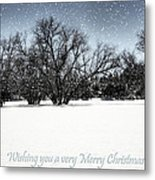 Wishing You A Very Merry Christmas Metal Print