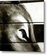 With My Steely Eyes Metal Print