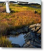 Woman By Boat On Grassy Shore Metal Print