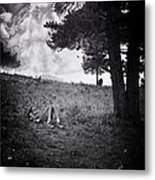 Woman On The Hill Metal Print