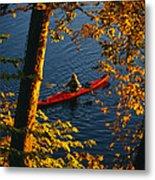 Woman Seakayaking On The Potomac River Metal Print by Skip Brown