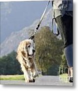 Woman Walking With Her Dog Metal Print
