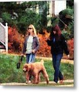 Women Walking A Dog Metal Print