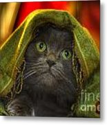 Wonder Metal Print by Joann Vitali
