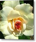 Wonderland Rose Metal Print