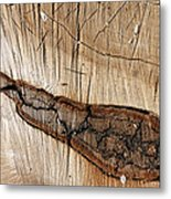 Wood Design Metal Print