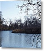 Wooded Island Exposition Metal Print