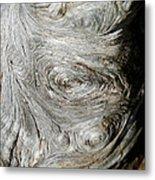 Wooden Fingerprint Eddies In The Grain Of An Old Log Like Whorls On A Finger Metal Print