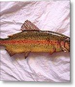 Wooden Rainbow Trout Number Nine Metal Print