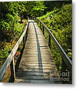 Wooden Walkway Through Forest Metal Print