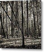 Woodland Metal Print