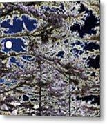 Woodland Solitude Metal Print