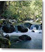 Woodland View Of A Small Creek Flowing Metal Print