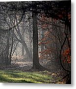 Woods - Dirt Road Photo - The Quiet Place Metal Print