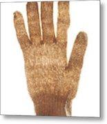 Woolen Glove Metal Print by Bernard Jaubert