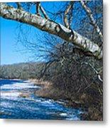 Wordens Pond Winter Metal Print
