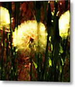 Worlds Within Worlds Metal Print