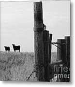 Wyoming Fence Line Metal Print