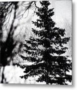 X-mas Tree Metal Print