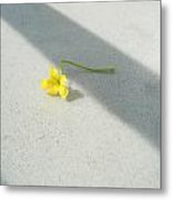 Yellow And Yellow Metal Print